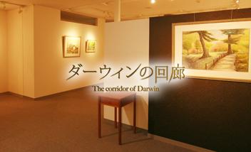 ダーウィンの回廊